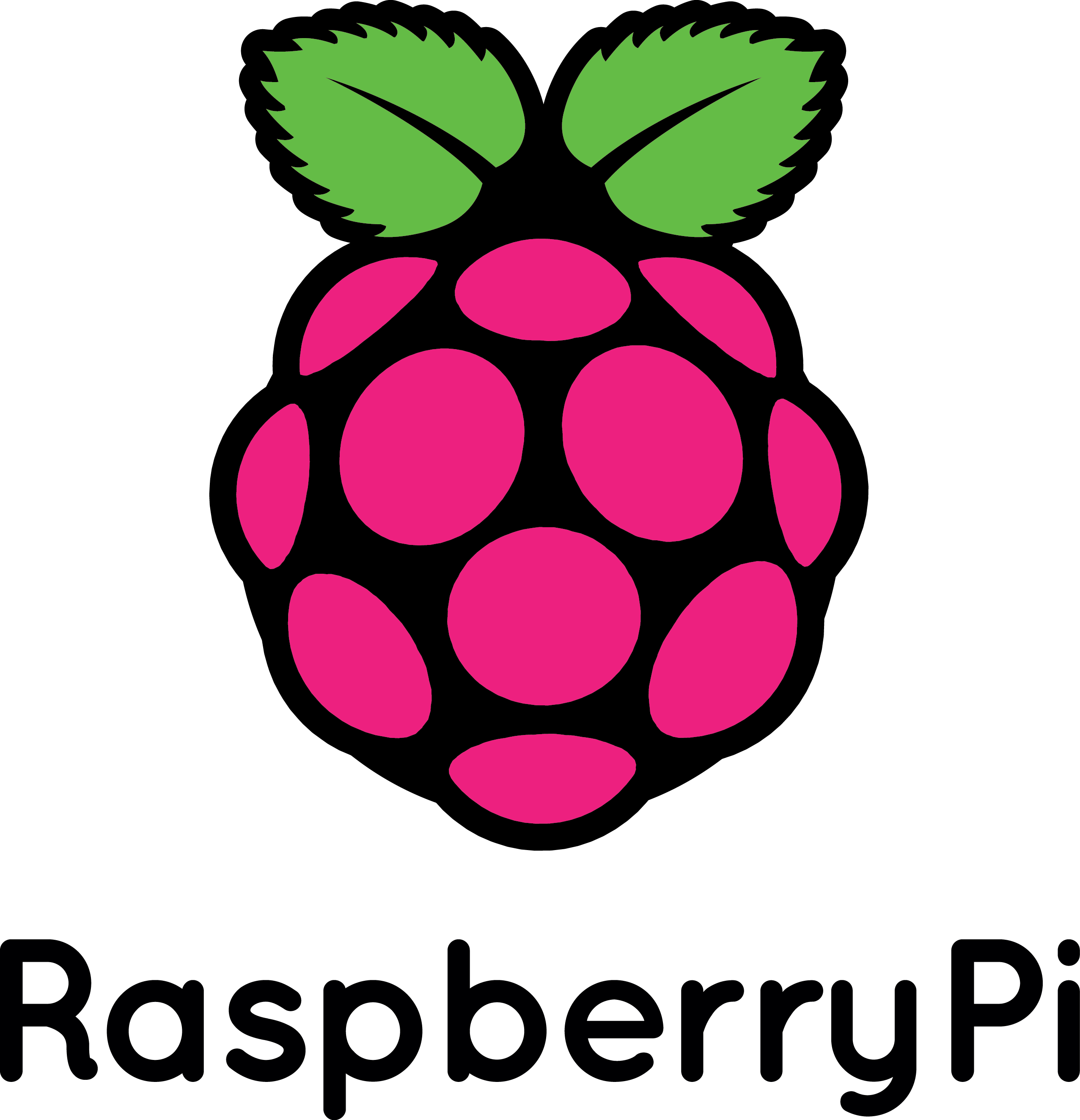 RaspberryPi tiny-computer running Linux and free software Logo