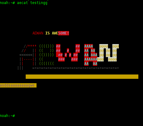 aewan aecat displaying properly previously saved ascii art picture