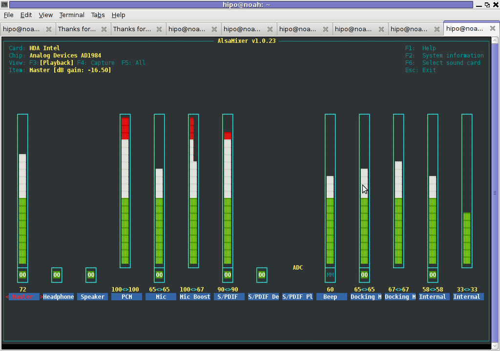 Alsamixer My Intel SoundCard Debian Linux