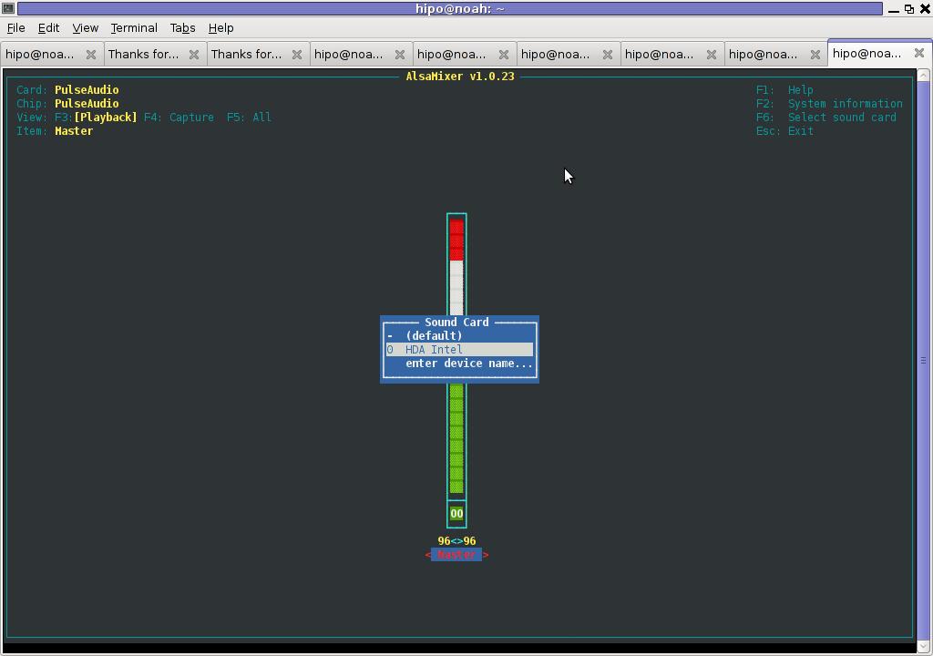 Alsamixer Select Soundcard Debian Linux Screenshot