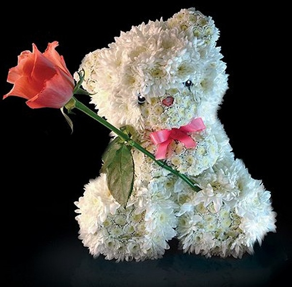 bear-for-you-picture-rose