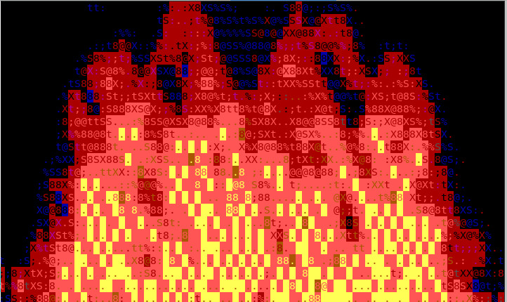 cacaview-fire-screenshot-ascii-art