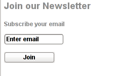 Email Newsletter on WordPress page Screenshot