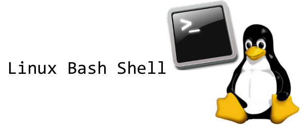 how-to-execute-ssh-command-on-multiple-linux-servers-with-native-ssh-client-and-bash-loop-changing-default-shell-terminal-to-bash-for-mass-many-multiple-linux-unix-servers