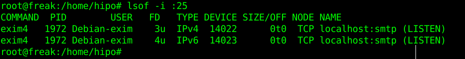mail-server-exim-check-lsof-screenshot
