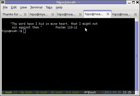 Screenshot of GNU screen running good colorful screenrc on Debian Linux