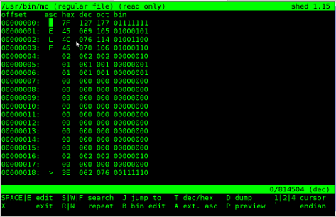 shed pico like hex binary editor Linux