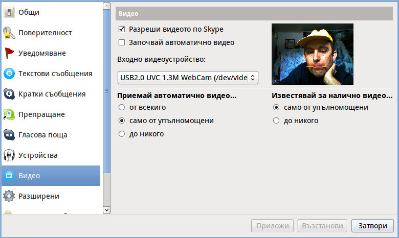 Skype fixed inverted bat like screenshot
