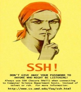 SSH Artistic Logo, don't give away your password