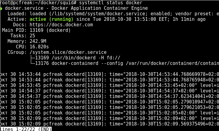 systemctl-docker-containerization-status-gnu-linux-screenshot