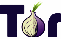 Tor Onion Logo