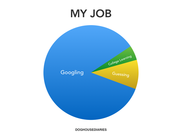 what-is-current-it-professionals-real-job-diagram