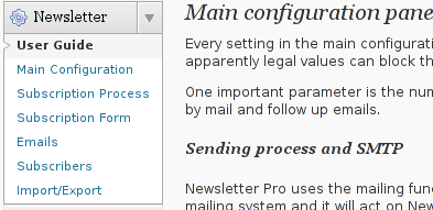 Wordpress Newsletter plugin configuration Screenshot